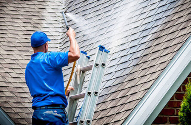 raleigh roof cleaning